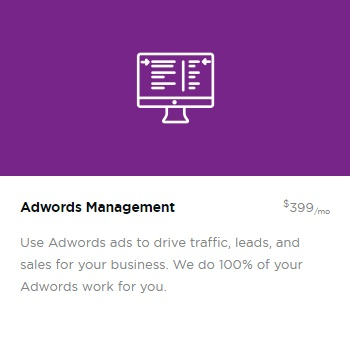 Google Adwords Management Service